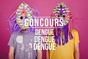 Concours express : Dengue Dengue Dengue aux NJP 2014