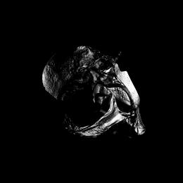 Chef Du Jour : SHYQA – VICTIM EP (EXTASIS022)