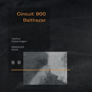 [PREMIERE] Circuit 900 – Balthazar (TRDV remix) [INDEXLIFE]